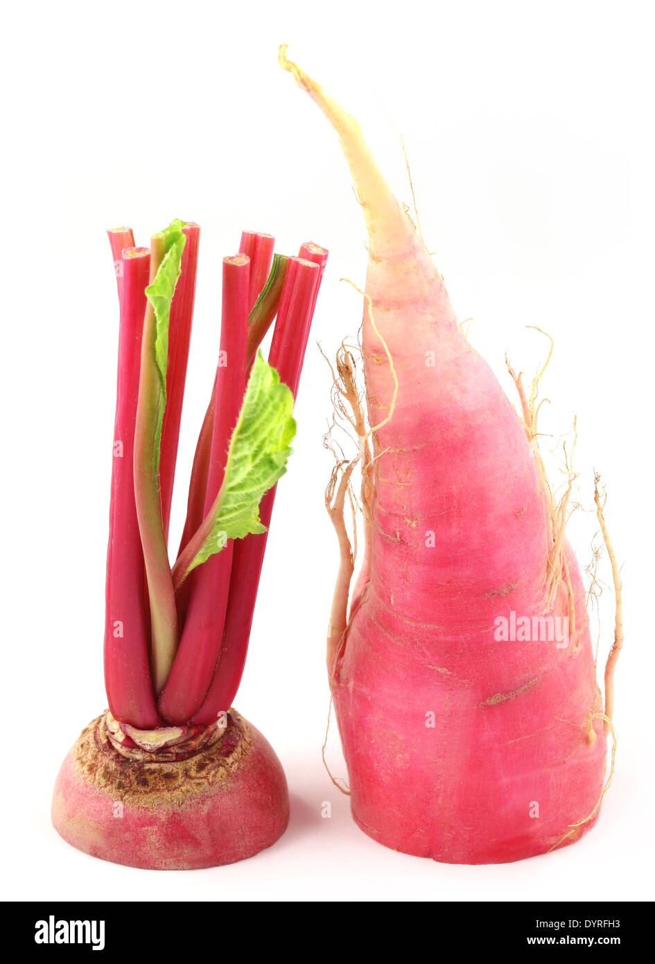 Closeup of red radish over white background - Stock Image