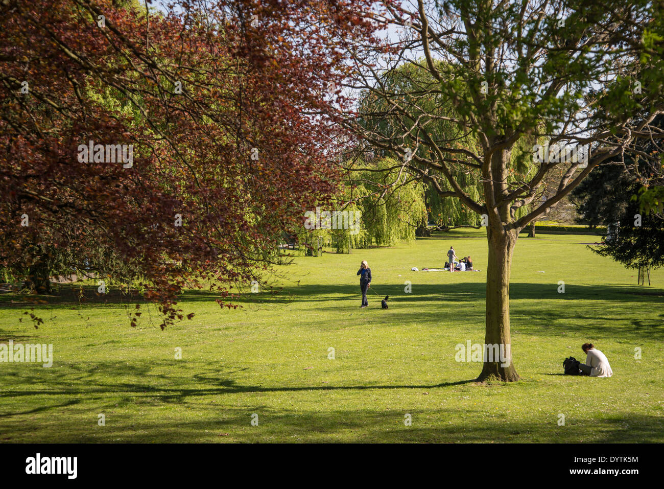 Radnor Gardens, Strawberry Hill, Borough of Richmond, London, UK ...