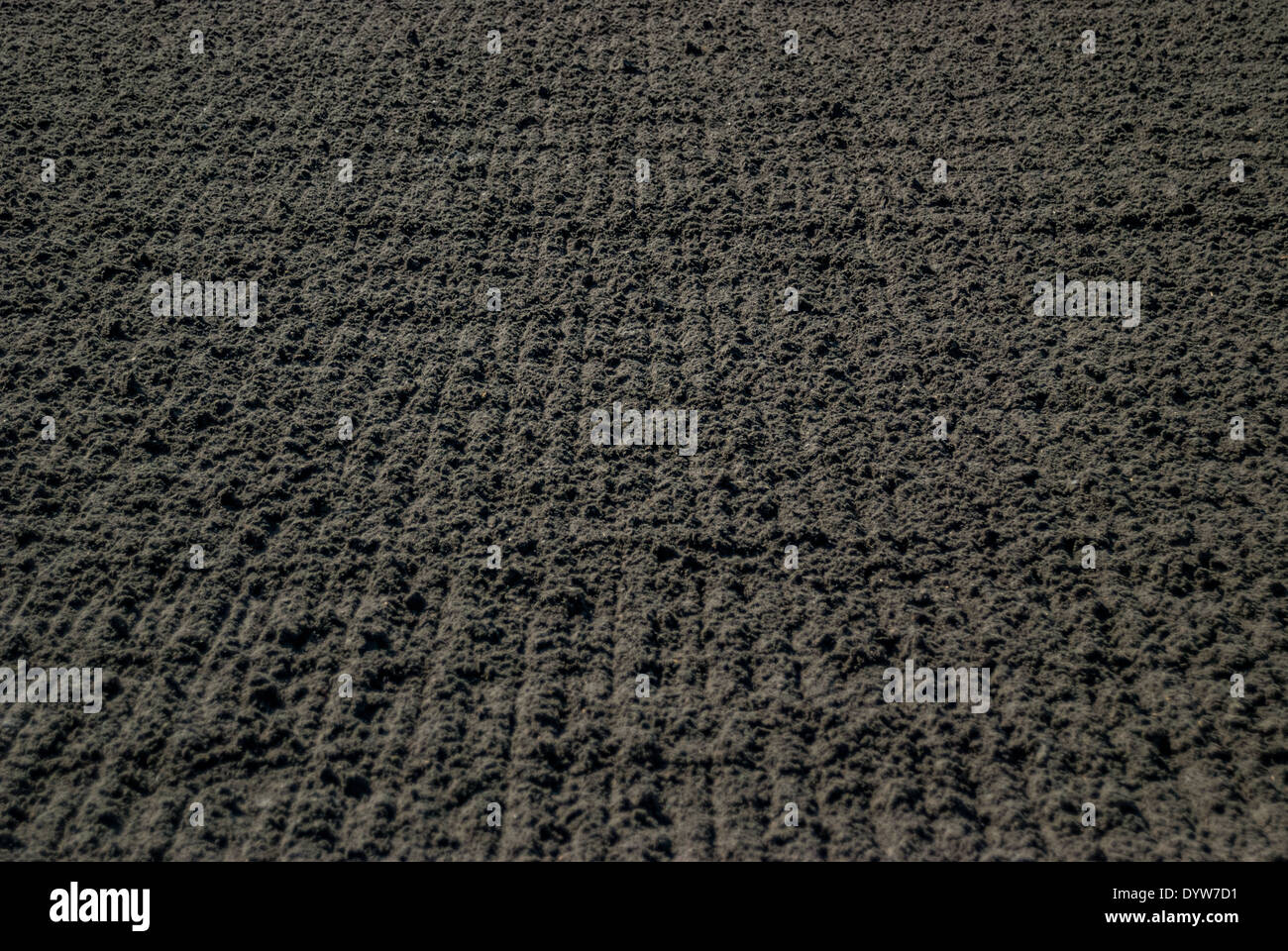 Raked Dirt at a Horse Race Track - Stock Image