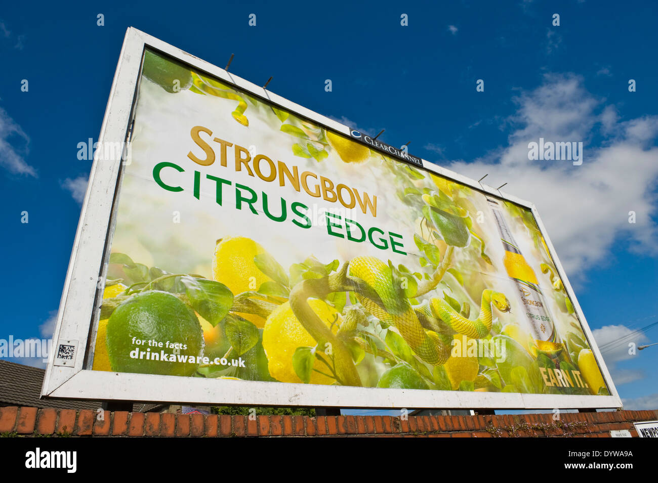 Bulmer's Strongbow Citrus Edge Cider 48 sheet advertising billboard poster on ClearChannel roadside site in Newport South Wales UK - Stock Image