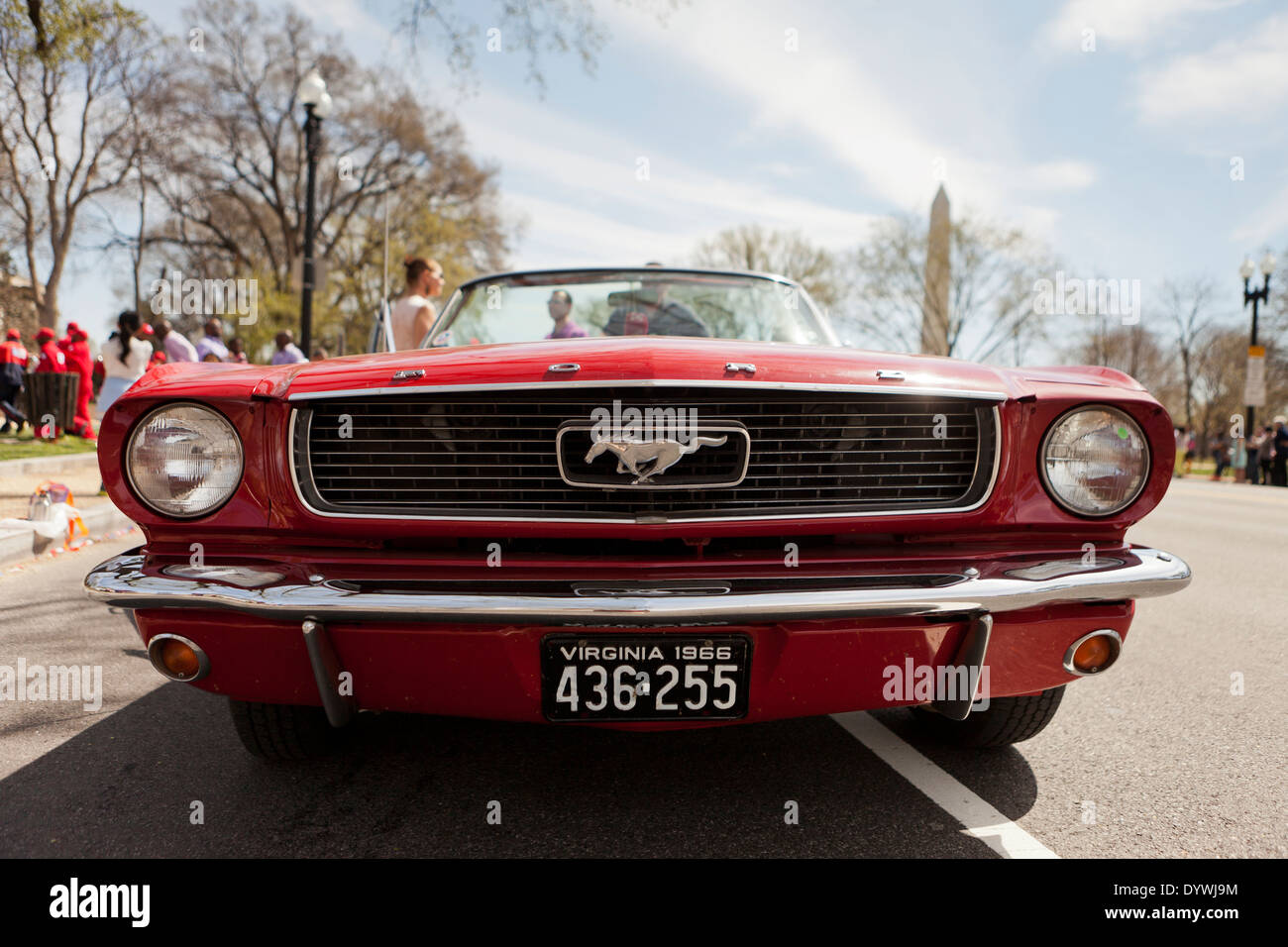 Ideal Ford Mustang Stock Photos & Ford Mustang Stock Images - Alamy YU22