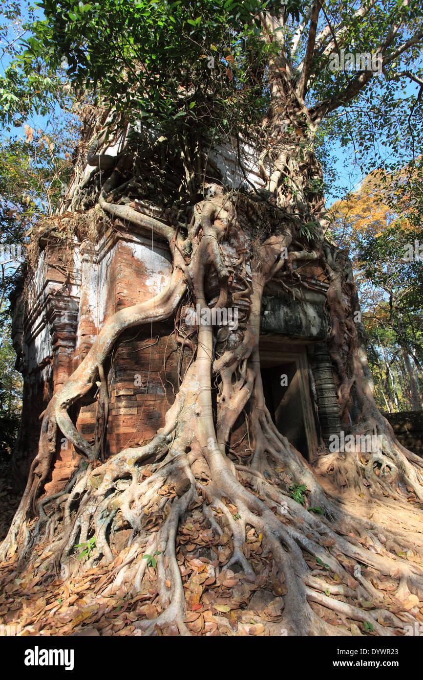 Koh Ker temple, Cambodia - Stock Image