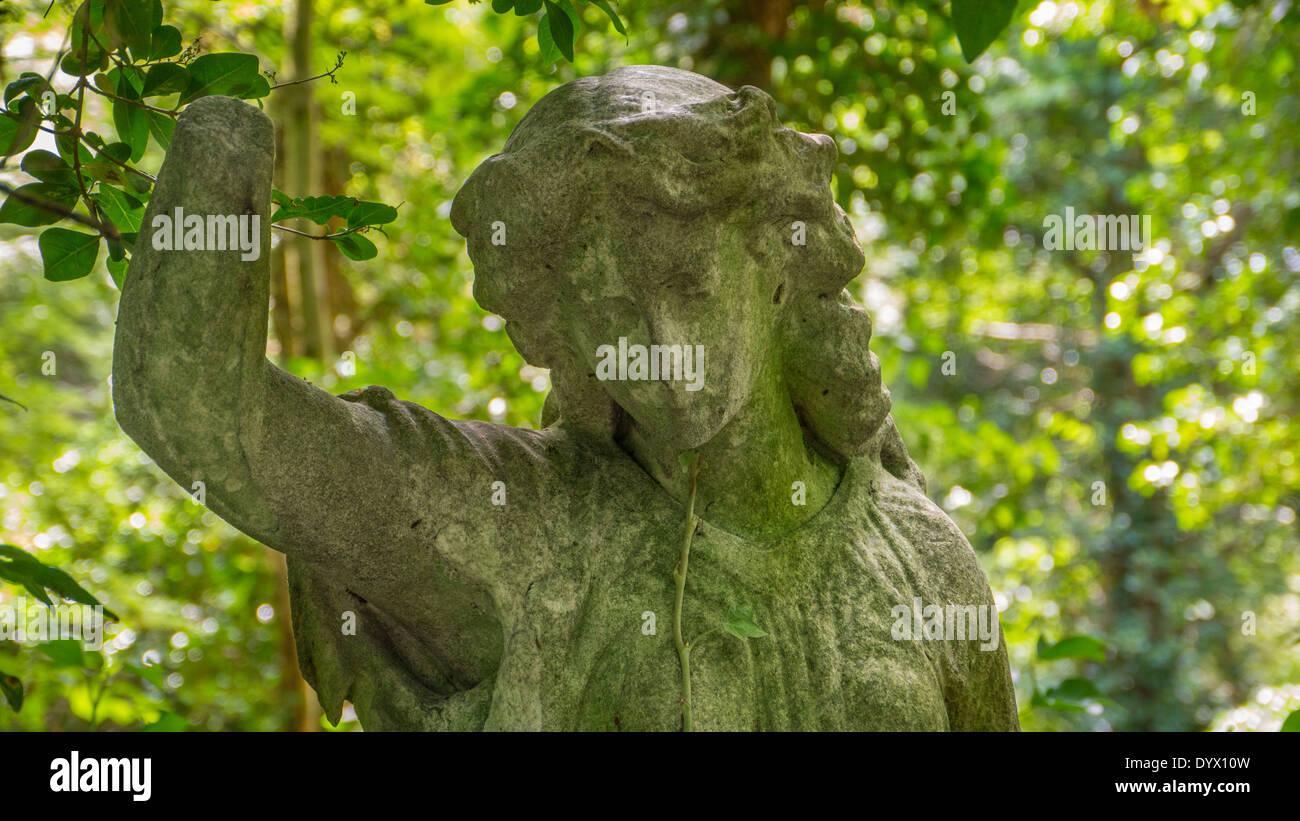 Graves at Highgate Cemetery, London. - Stock Image