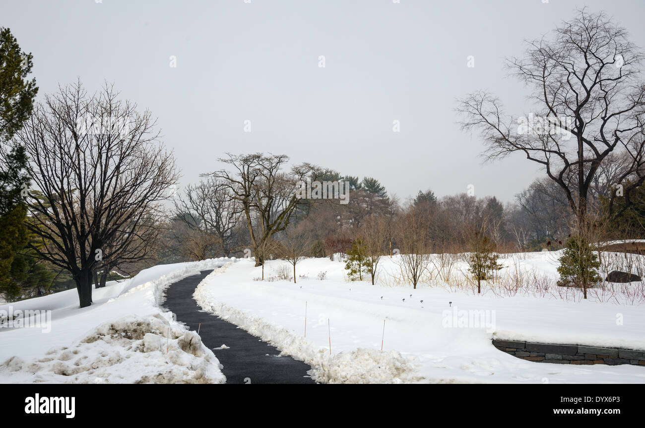A snow clad landscape with a winding walkway and barren trees in New York Botanical garden, New York, USA - Stock Image