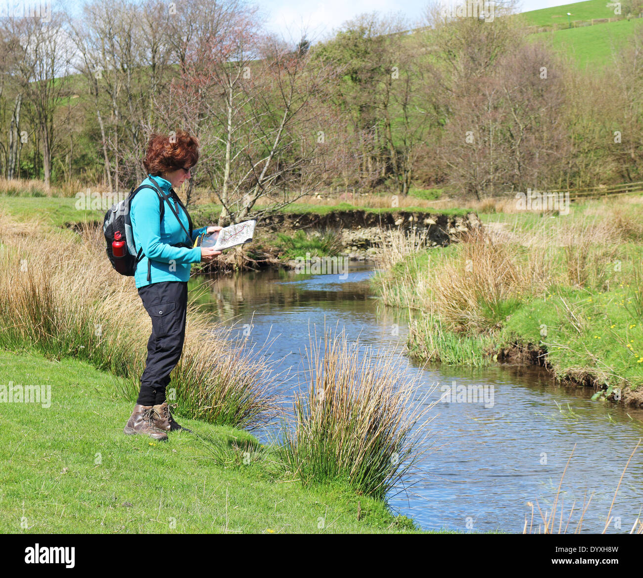 Lady Rambler standing by a river in Cumbria reading a map Stock Photo