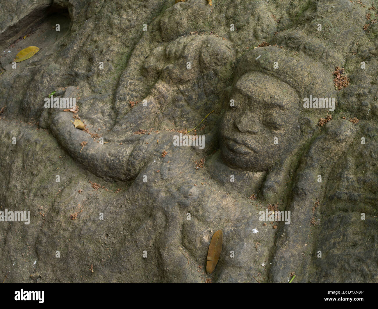 Kbal Spean carvings in the riverbed northeast of Angkor. Siem Reap, Cambodia - Stock Image