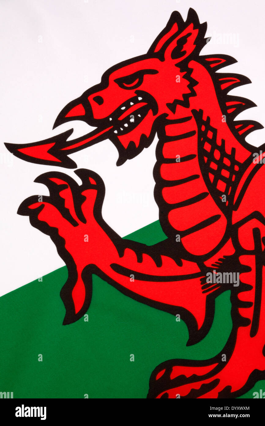National Symbol Of Wales Stock Photos National Symbol Of Wales