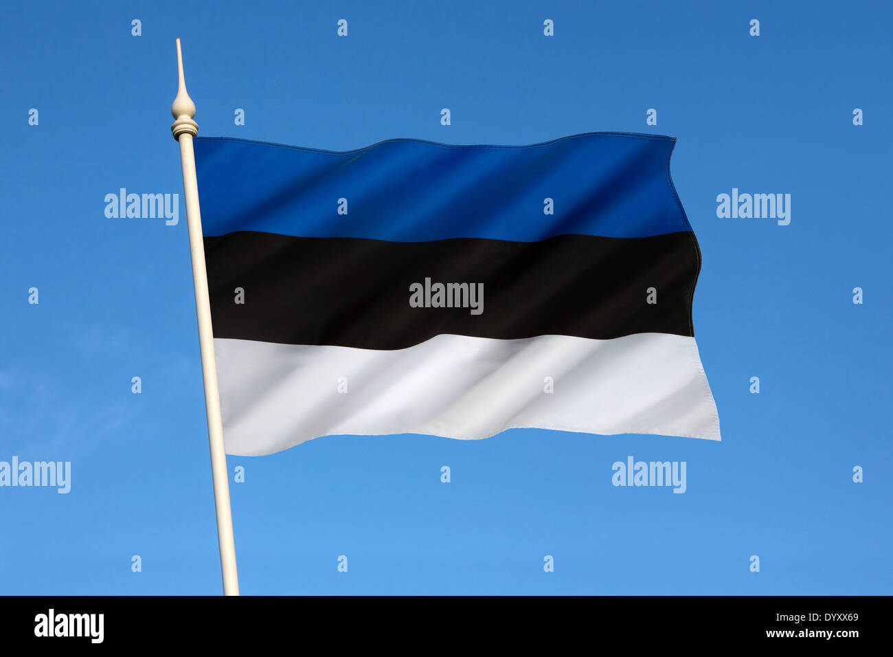 The national flag of Estonia. - Stock Image