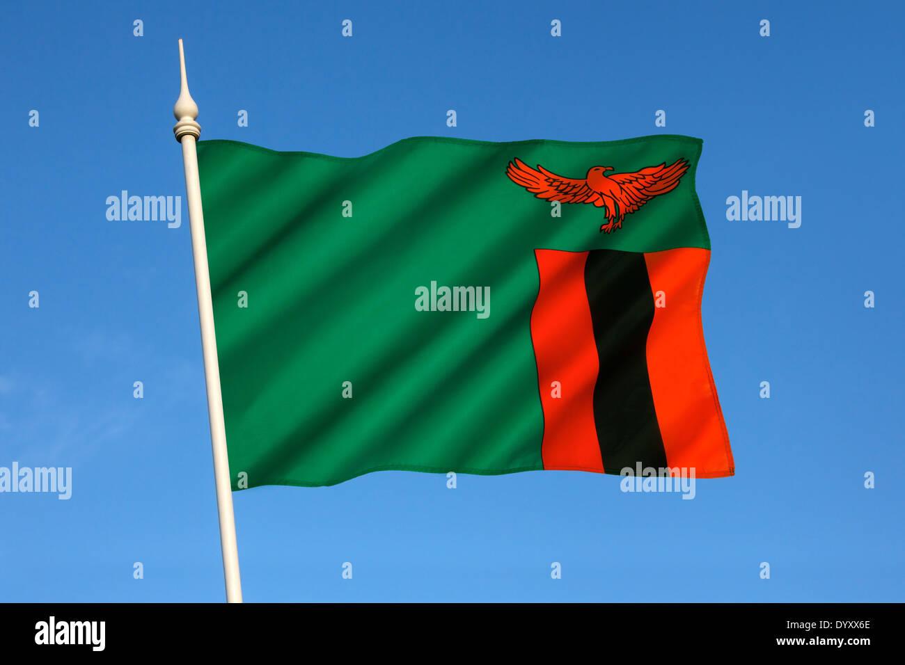 Flag of Zambia - Stock Image