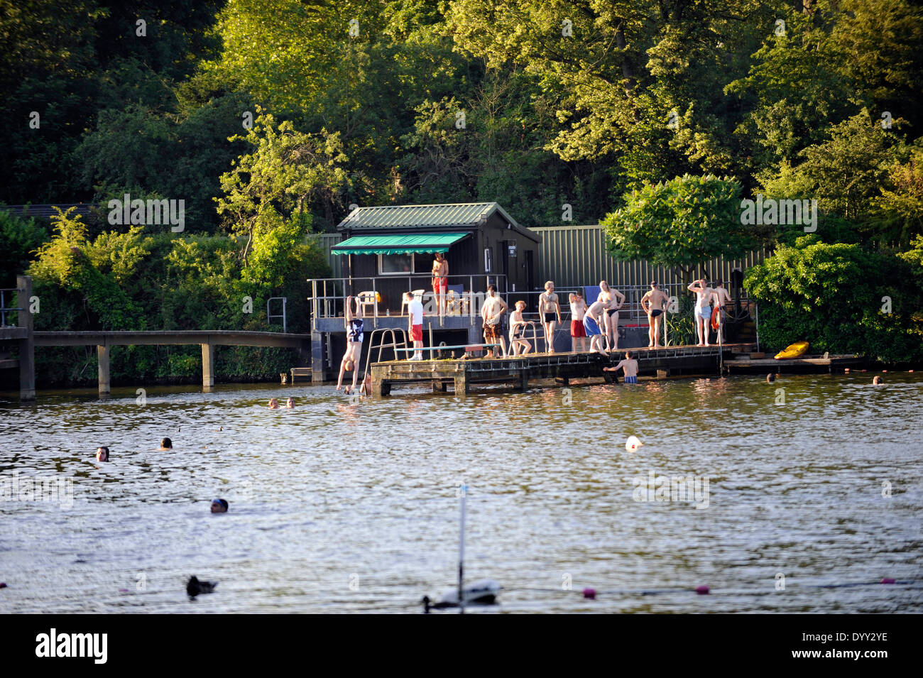 Hampstead heath pond swimming stock photos hampstead heath pond swimming stock images alamy for Hampstead heath park swimming pool