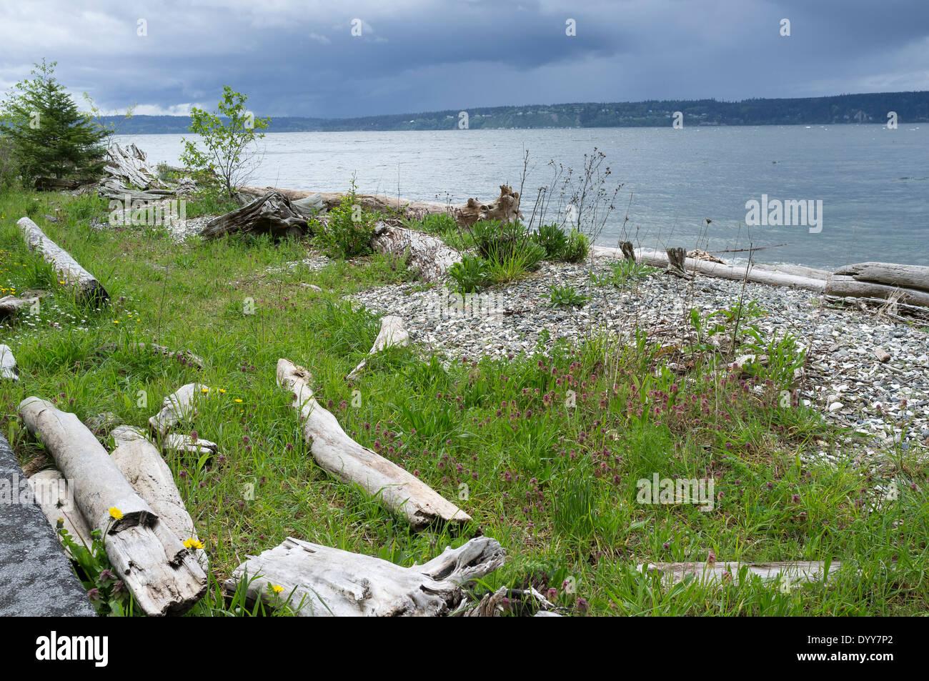 Squall coming in over Cama Beach State Park - Camano Island, Island County, Washington, USA - Stock Image
