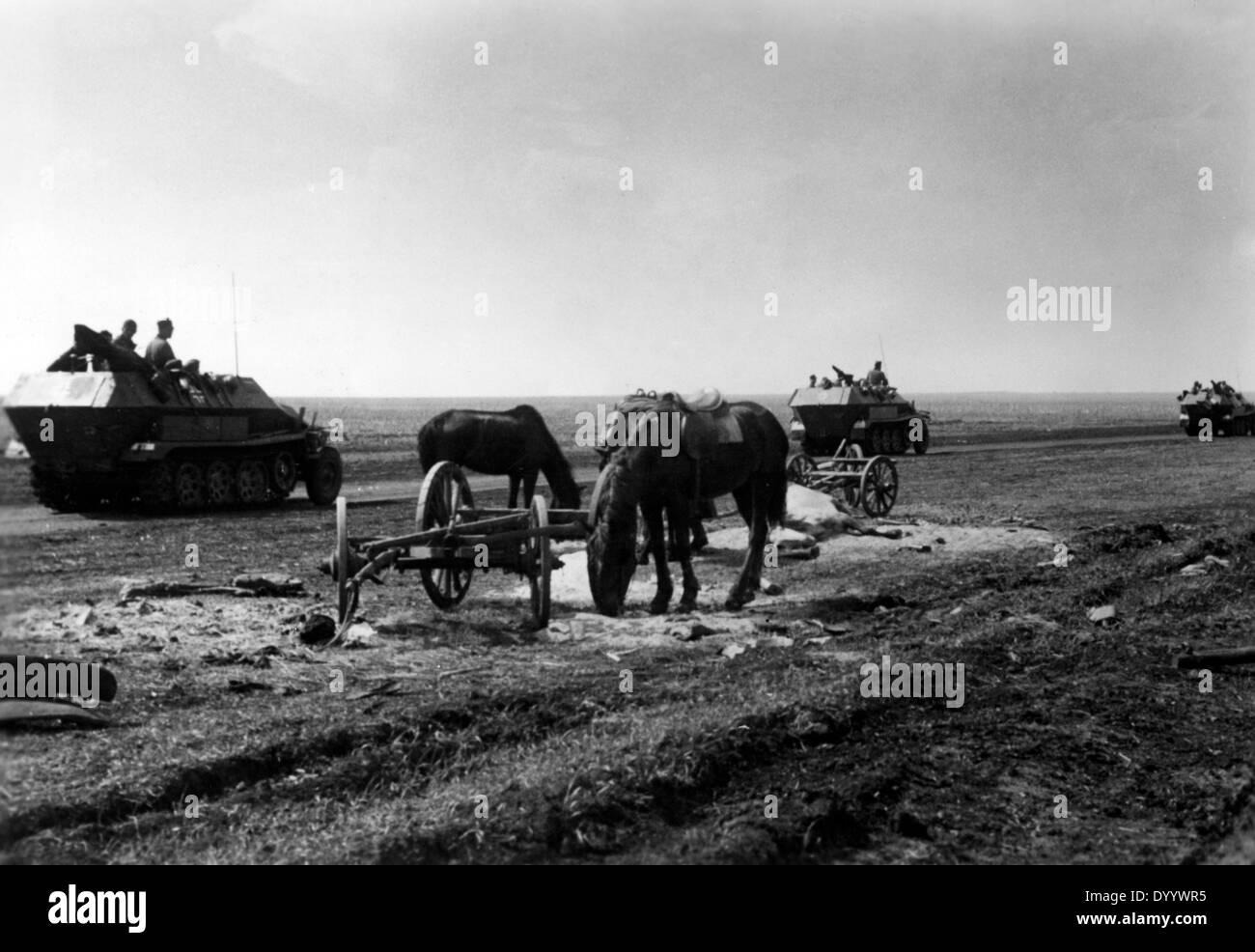 World War II: The Battle of Kharkov-Izyum, May 1942 - Stock Image