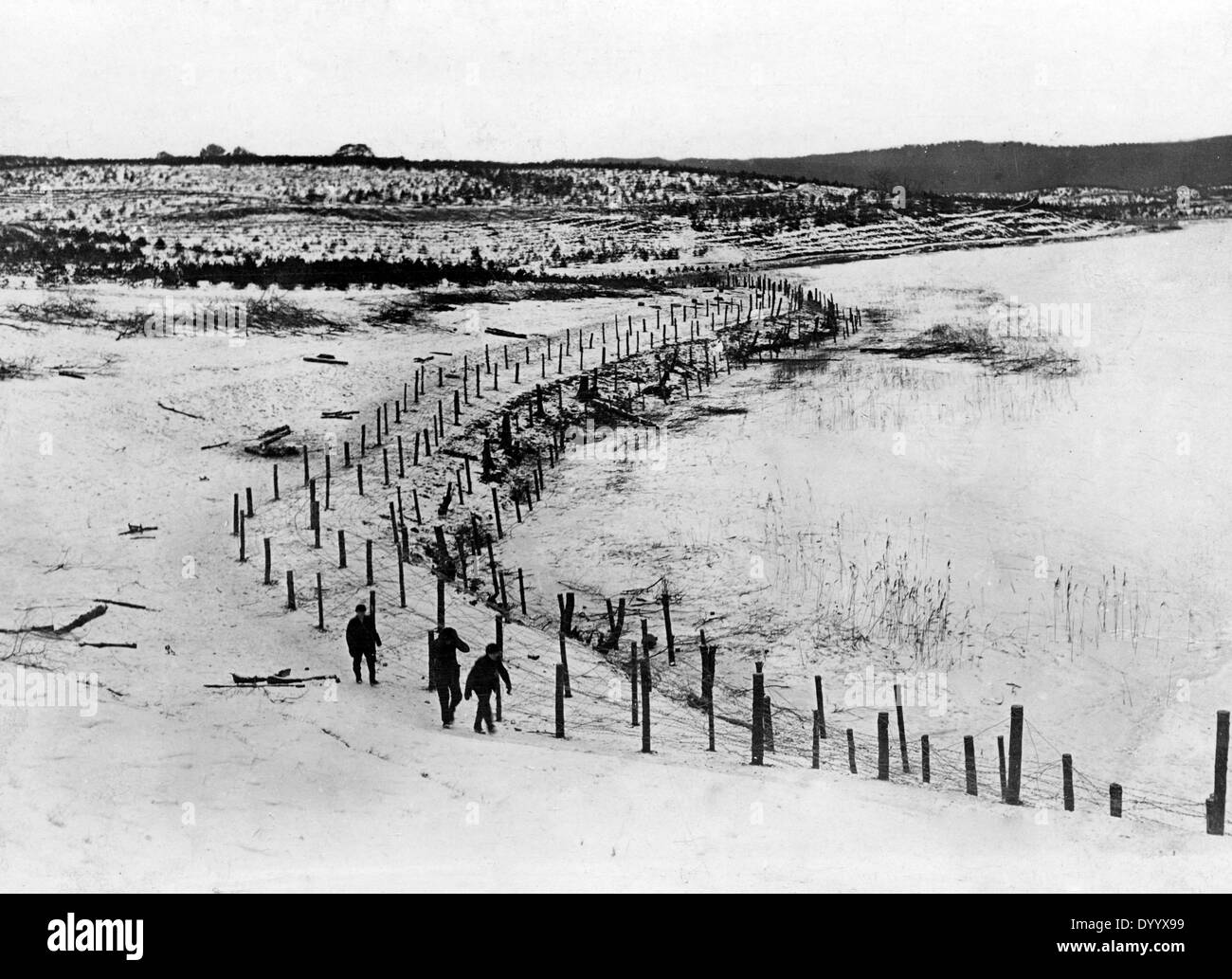 Barbed wire entanglement at the Masurian Lakes, 1915 - Stock Image