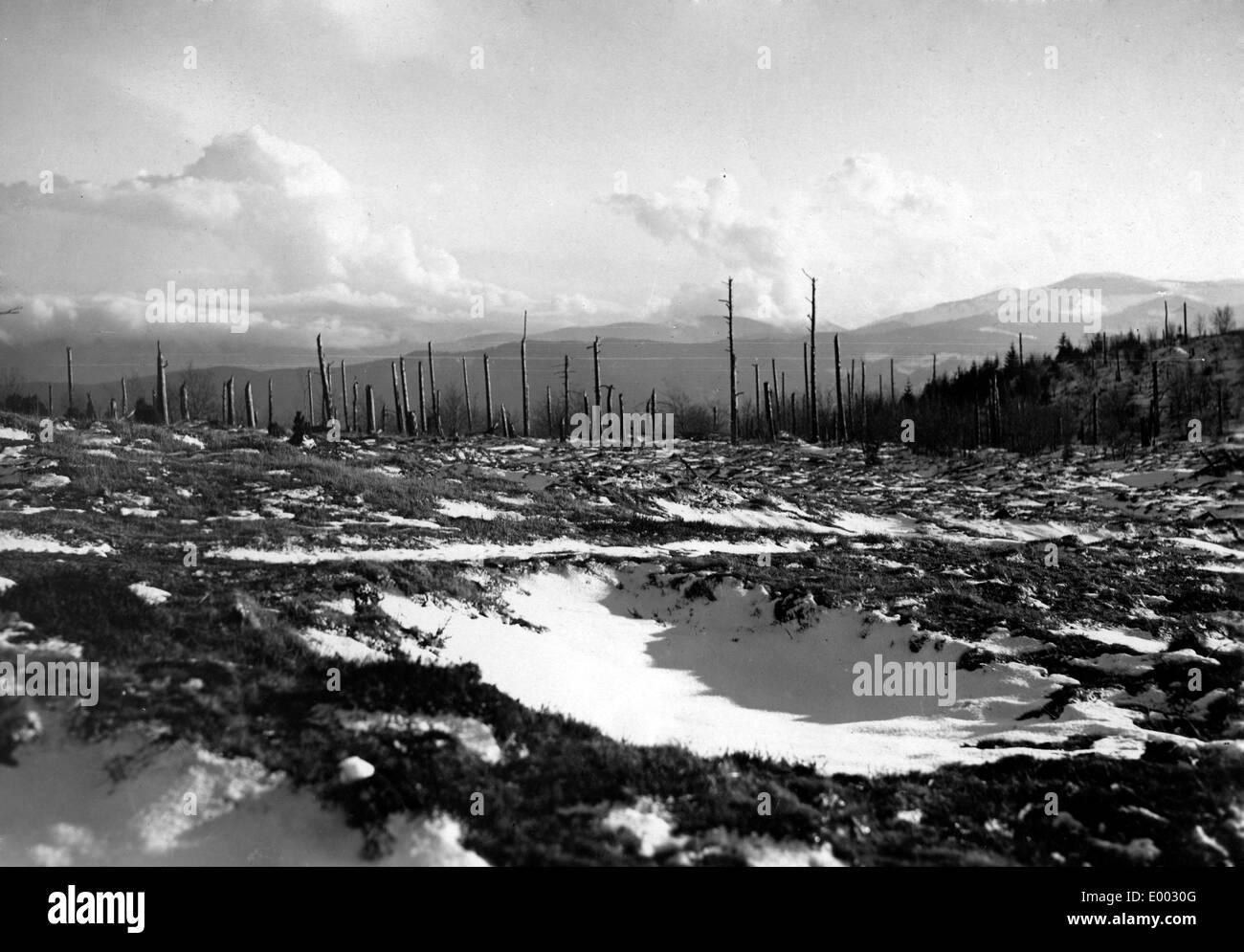 destroyed landscape western front stock photos destroyed landscape