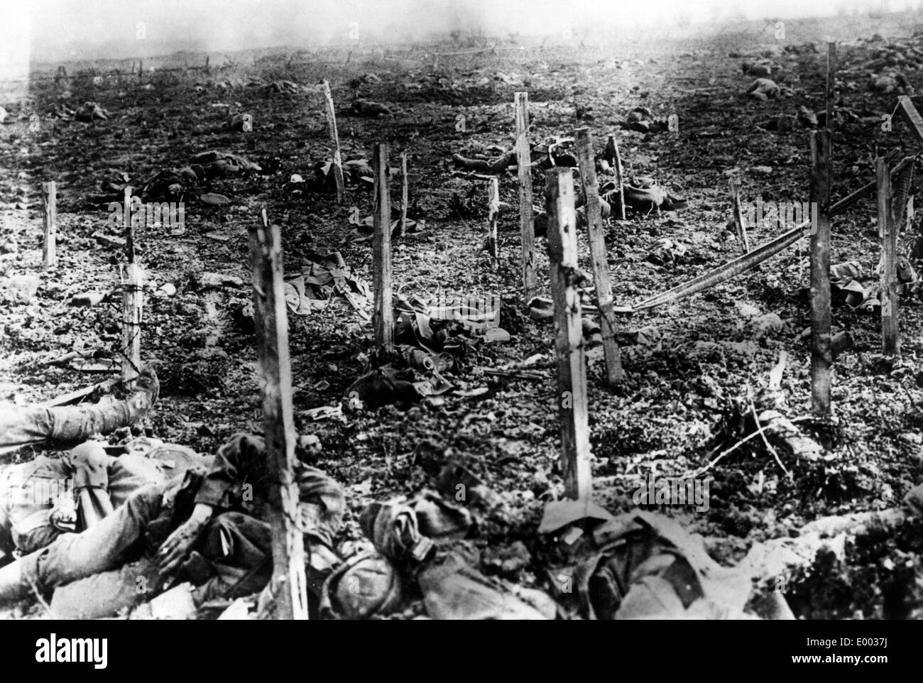 Killed British soldiers at the Western Front, 1915 - Stock Image