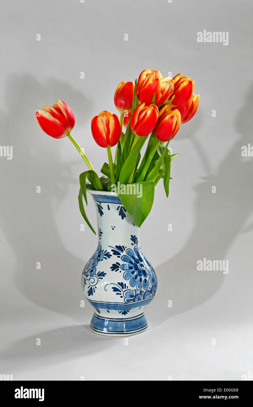 Red and yellow Dutch tulips in a blue and white Dutch Delft China vase Stock Photo