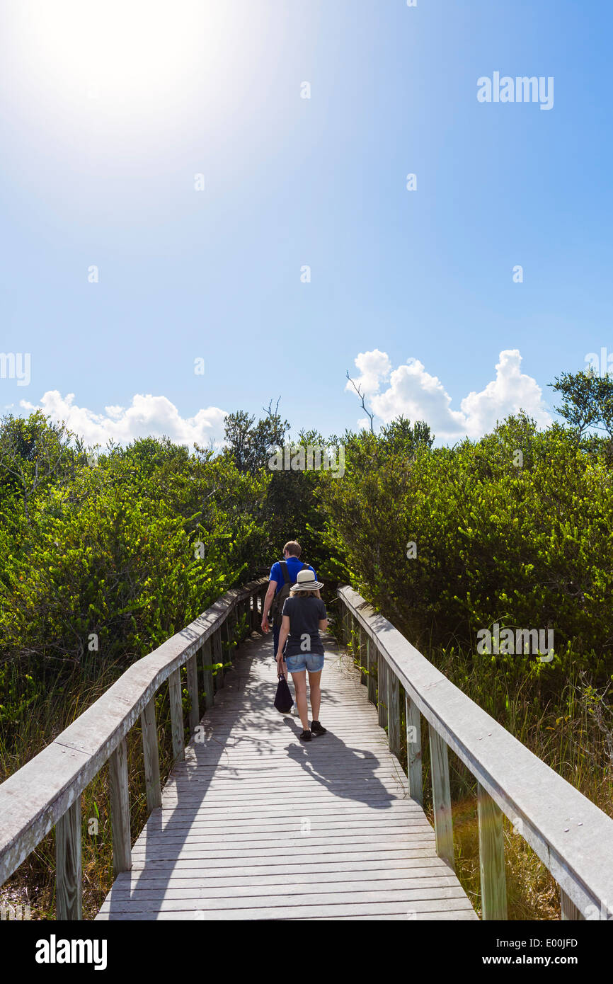 Couple on the Bobcat Boardwalk near the Shark Valley Visitor Center, Everglades National Park, Florida, USA - Stock Image