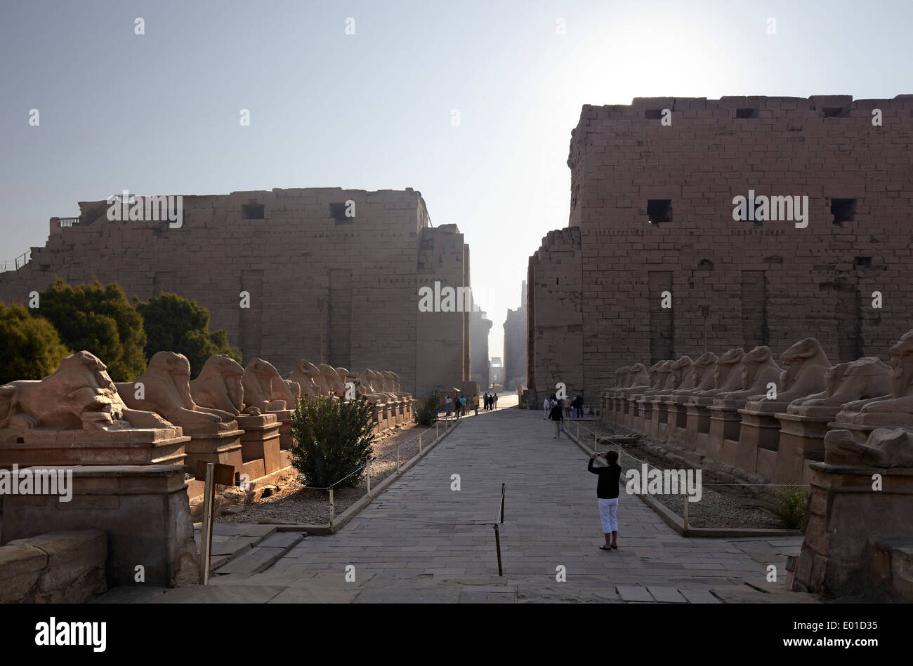 Karnak Temple. Largest religious building in the world. Open air museum. Avenue of rams. - Stock Image