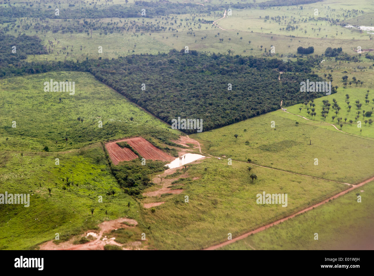 Belem to Maraba, Brazil. Aerial view of a patch of forest surrounded by farm land deforested for cattle pasture. - Stock Image