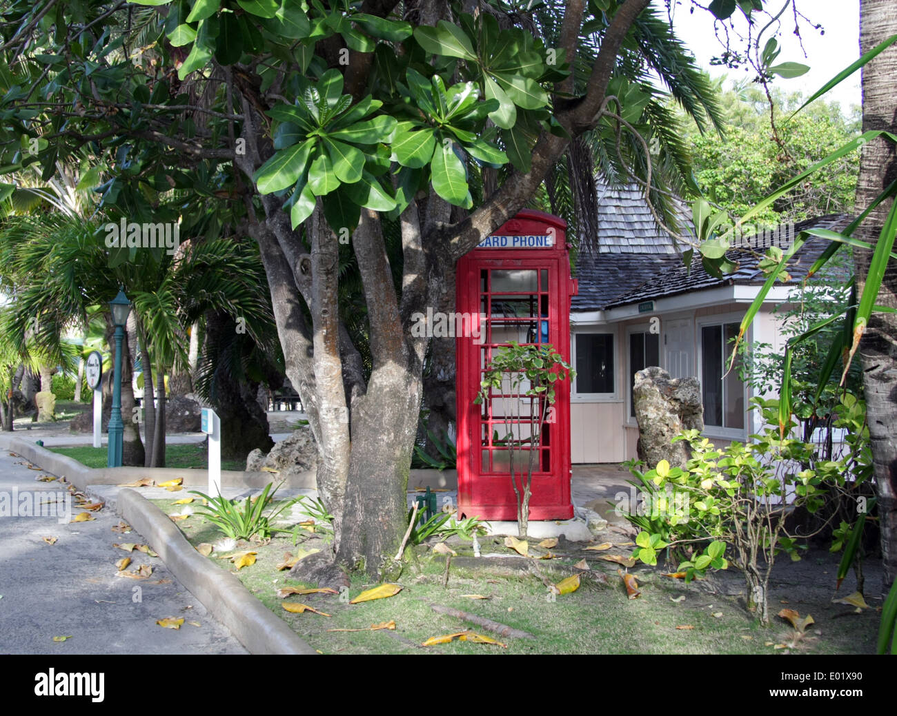British telephone kiosk red phone box on the Caribbean island of Antigua - Stock Image