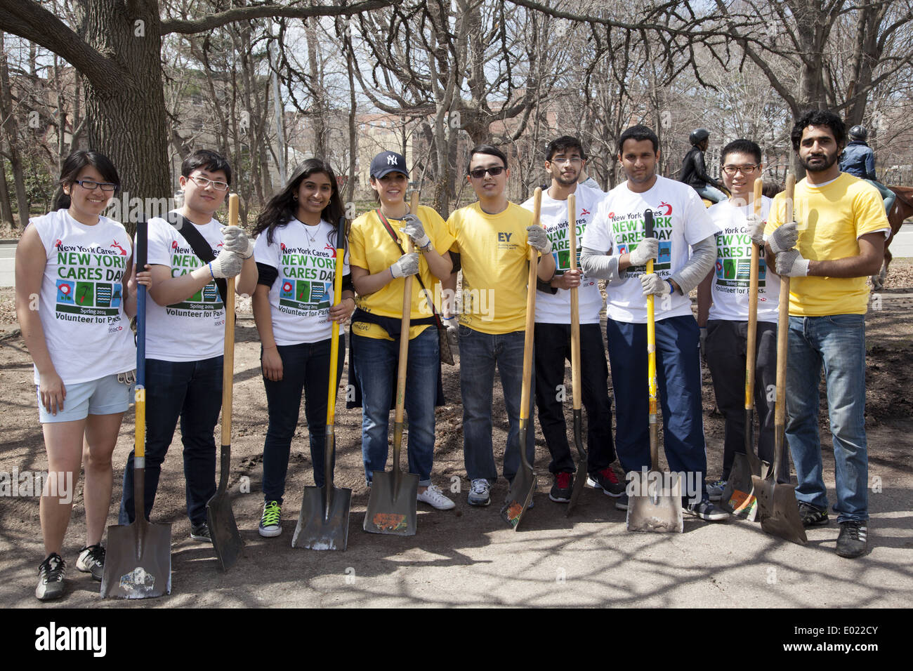 NYU Students & employees from Ernst & Young volunteer at park cleanup day hosted by New York Cares at Prospect Park, Brooklyn NY - Stock Image