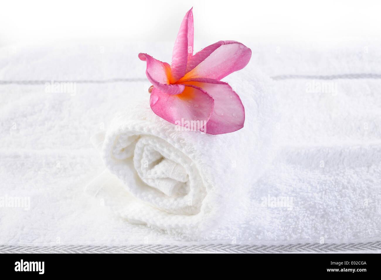 massage towel with plumeria flower - Stock Image
