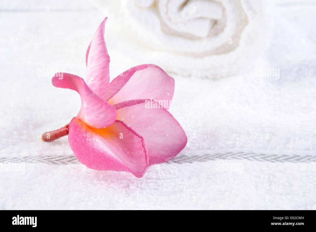 towel with plumeria flower - Stock Image