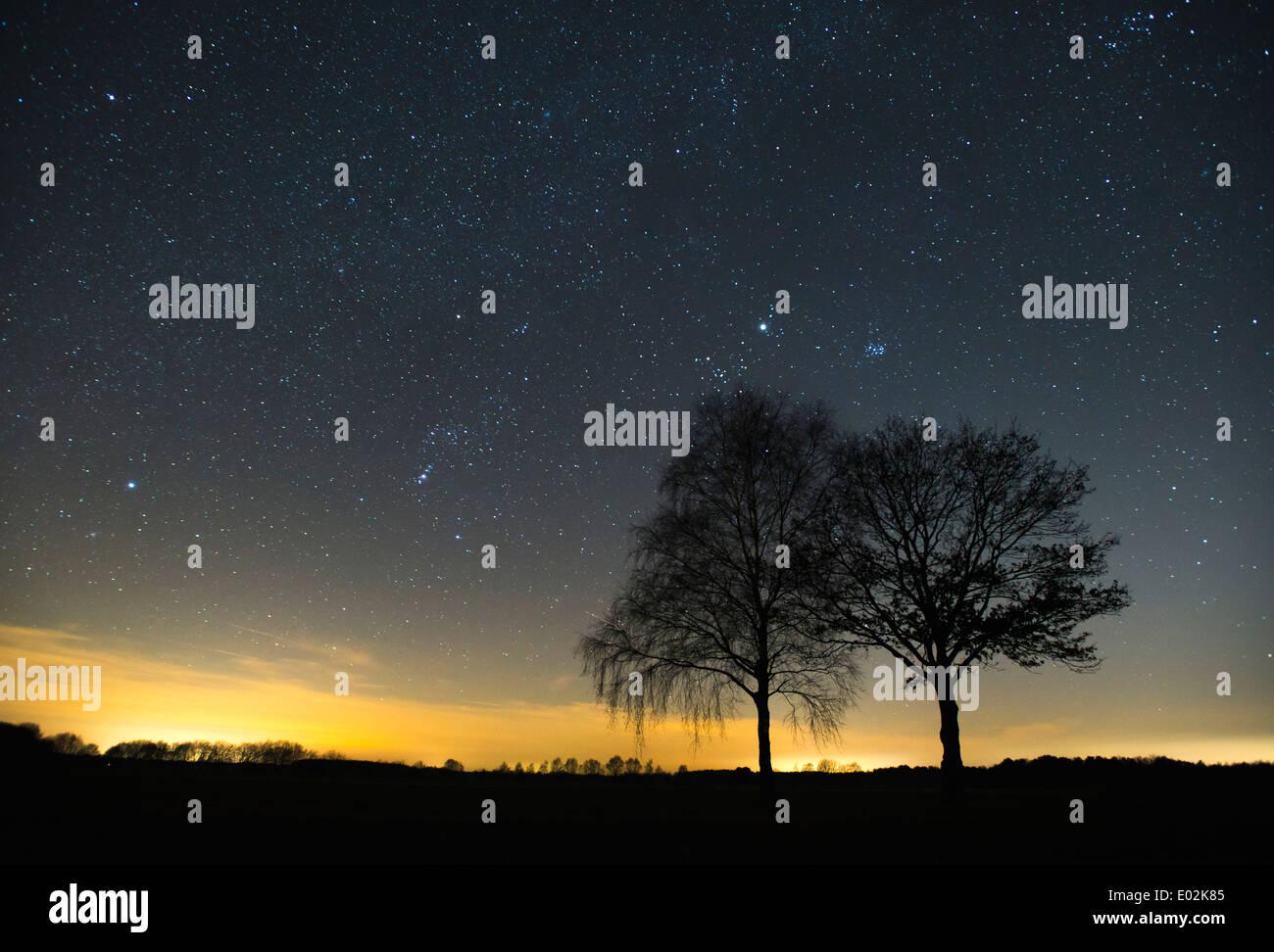 starry sky, vechta district, niedersachsen, germany Stock Photo