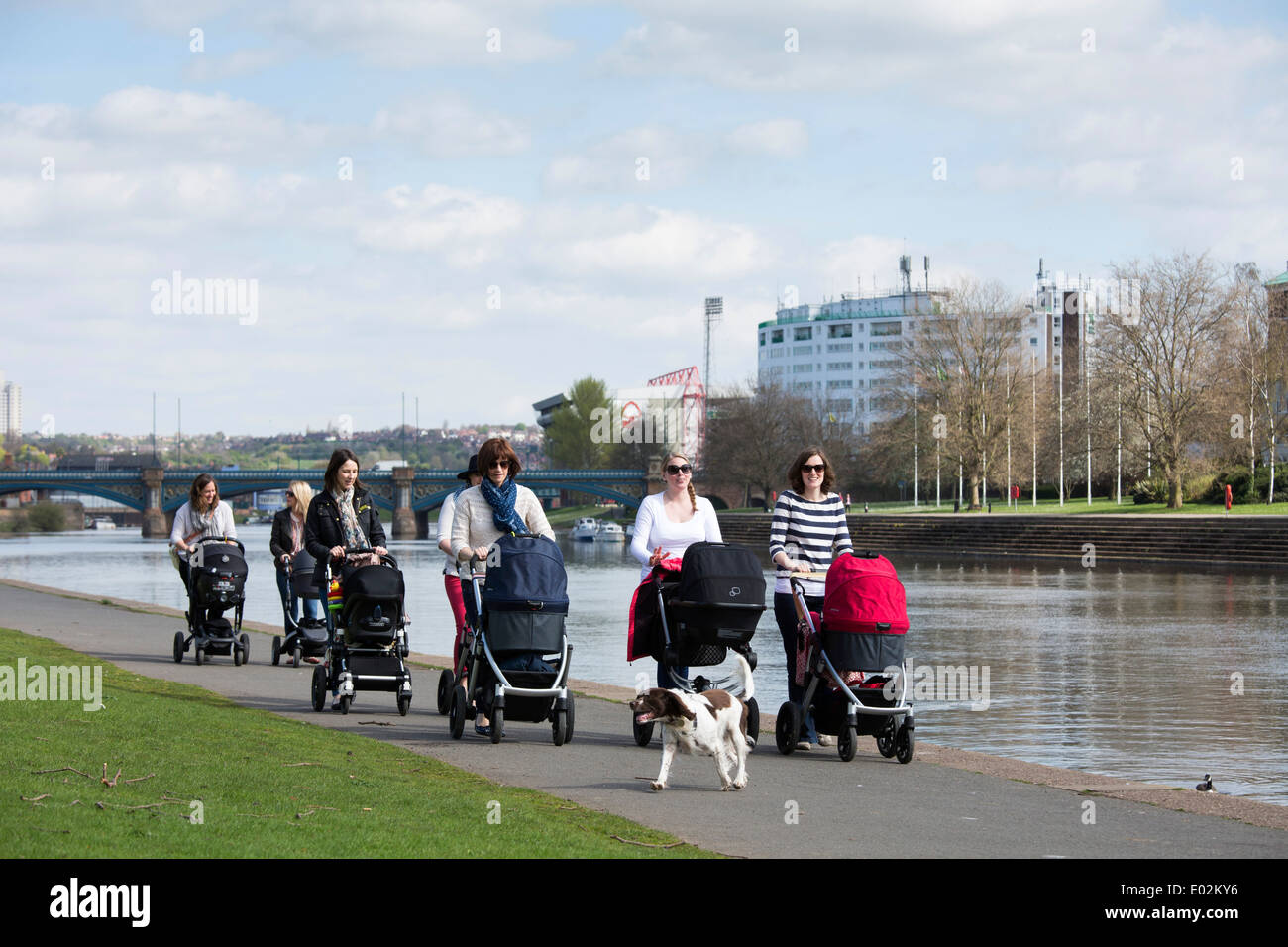 A group of mums who are friends, walking with their pushchairs along the embankment next to the River Trent in Nottingham, UK. - Stock Image