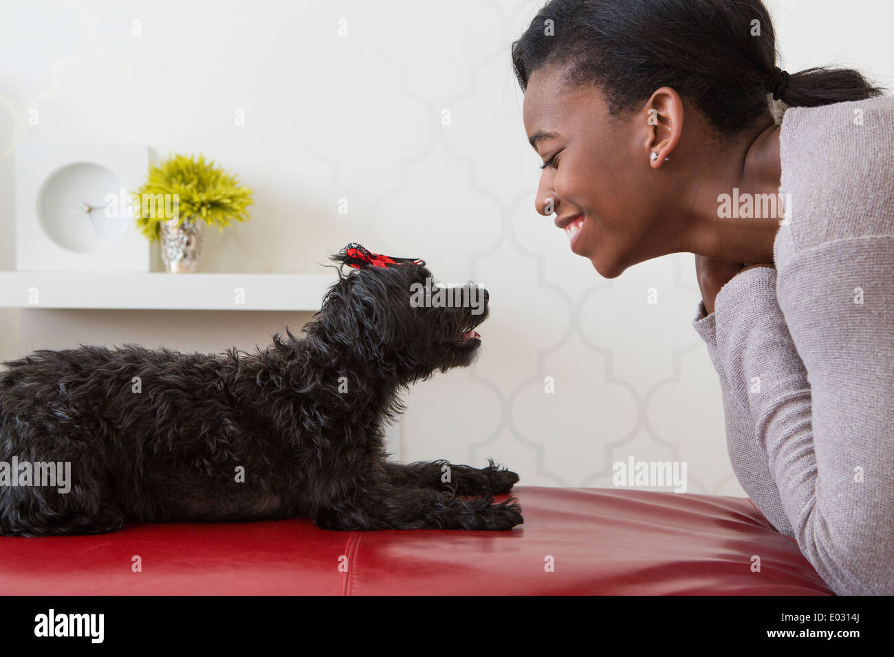 A young girl playing with her small black pet dog. - Stock Image