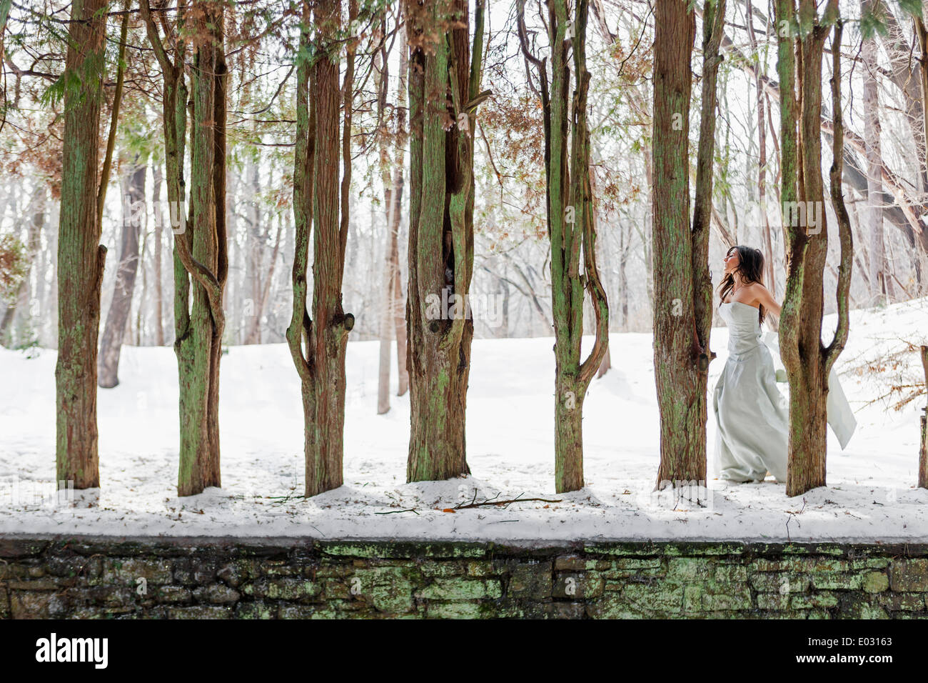 A woman in a ball gown outdoors in the snow. Stock Photo