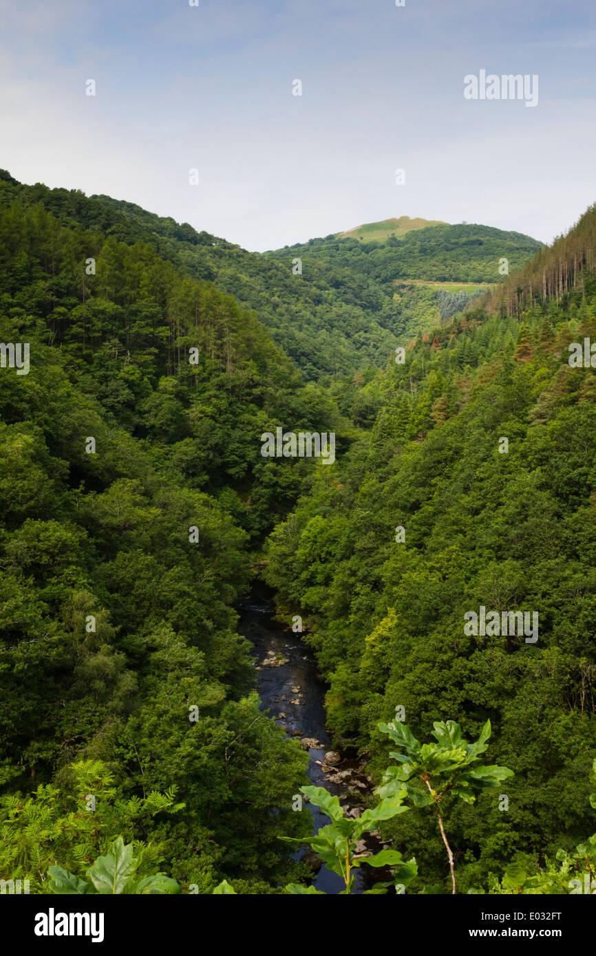 CEREDIGION, WALES View of Afon Rheidol river, near Devil's Bridge. - Stock Image