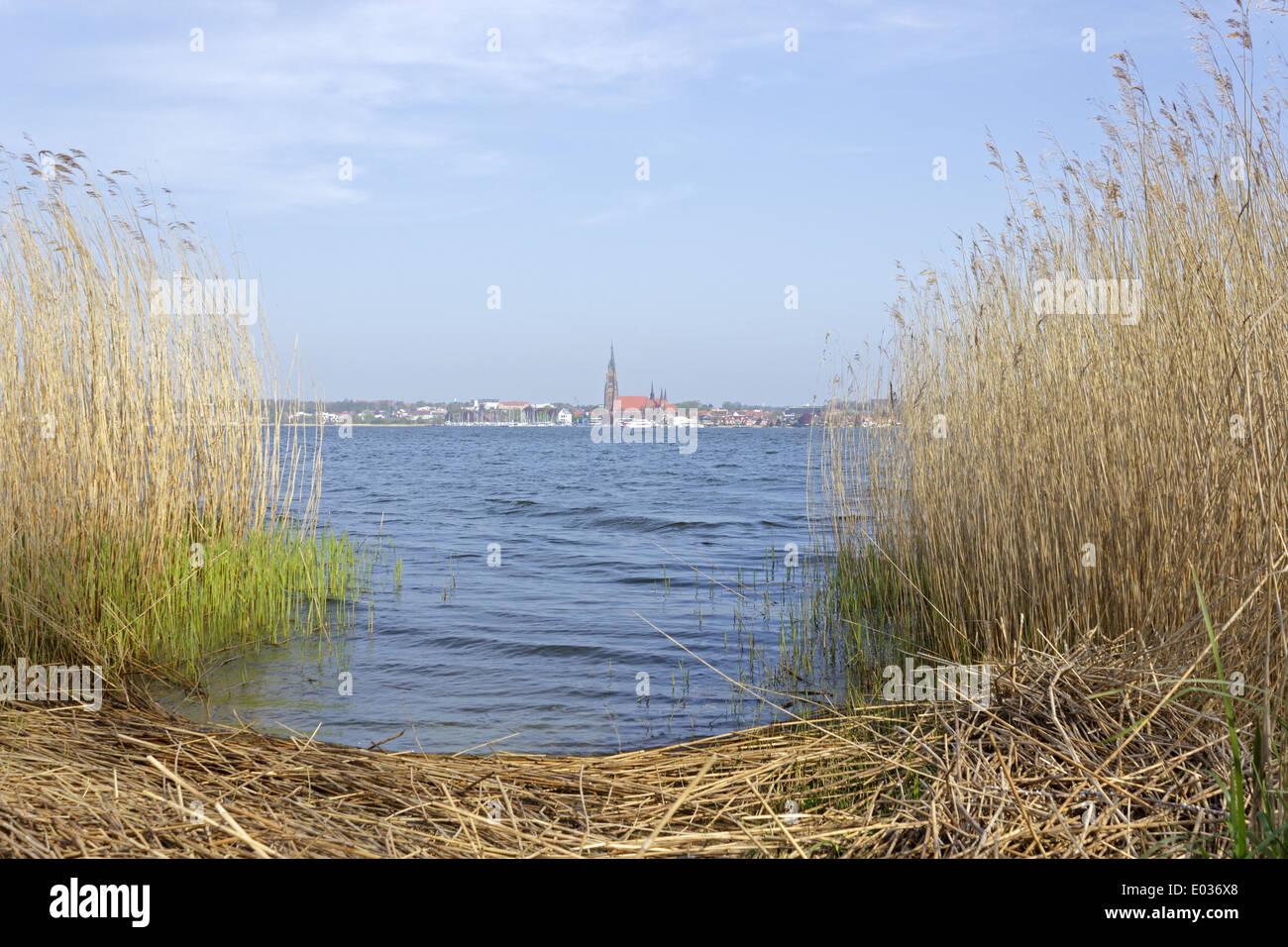 Schleswig, Baltic Sea Fjord Schlei, Schleswig-Holstein, Germany - Stock Image