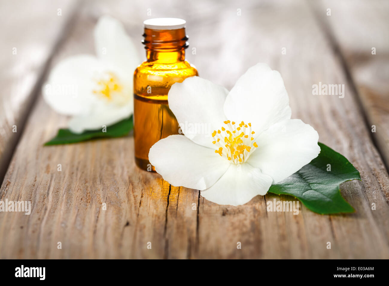 Jasmine oil stock photos jasmine oil stock images alamy jasmine flowers with essential oil on table background beauty treatment stock image izmirmasajfo