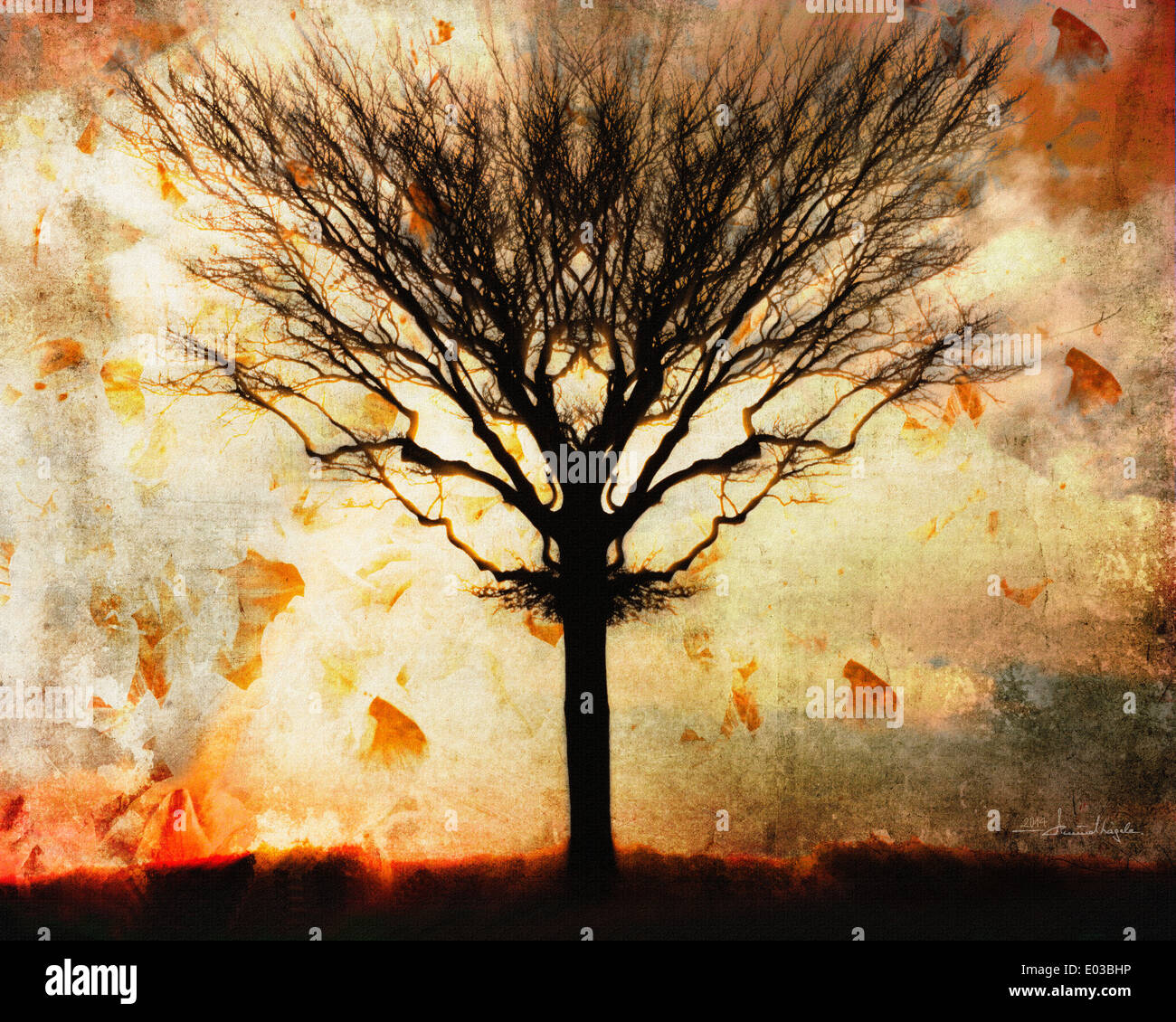 FINE ART: Autumn Winds Stock Photo