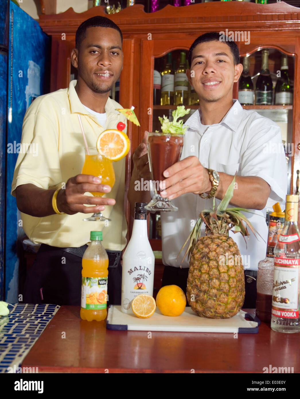 Bartenders Stock Photos & Bartenders Stock Images - Alamy