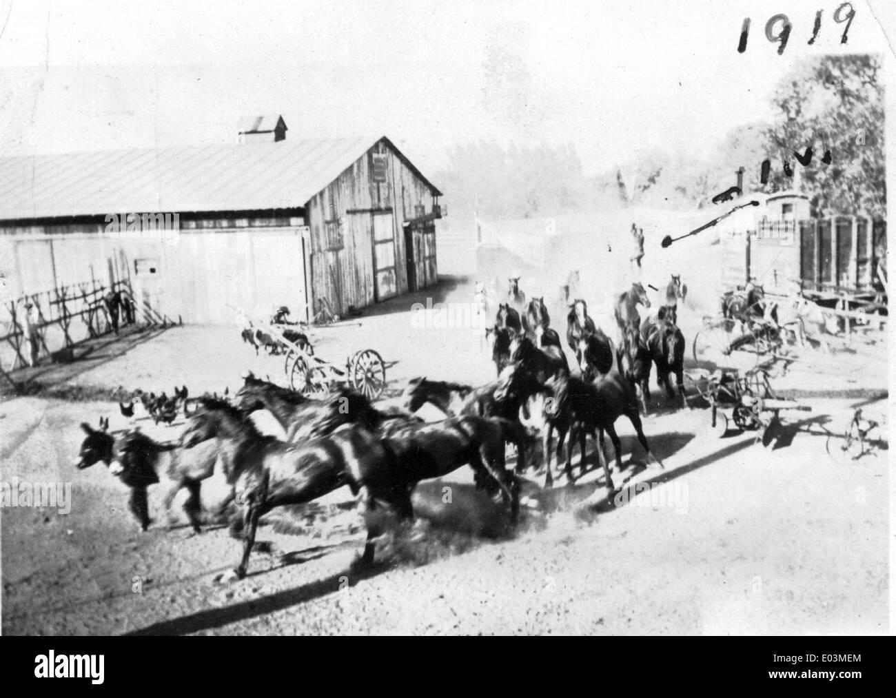 Horses running during movie stunt, 1919 - Stock Image