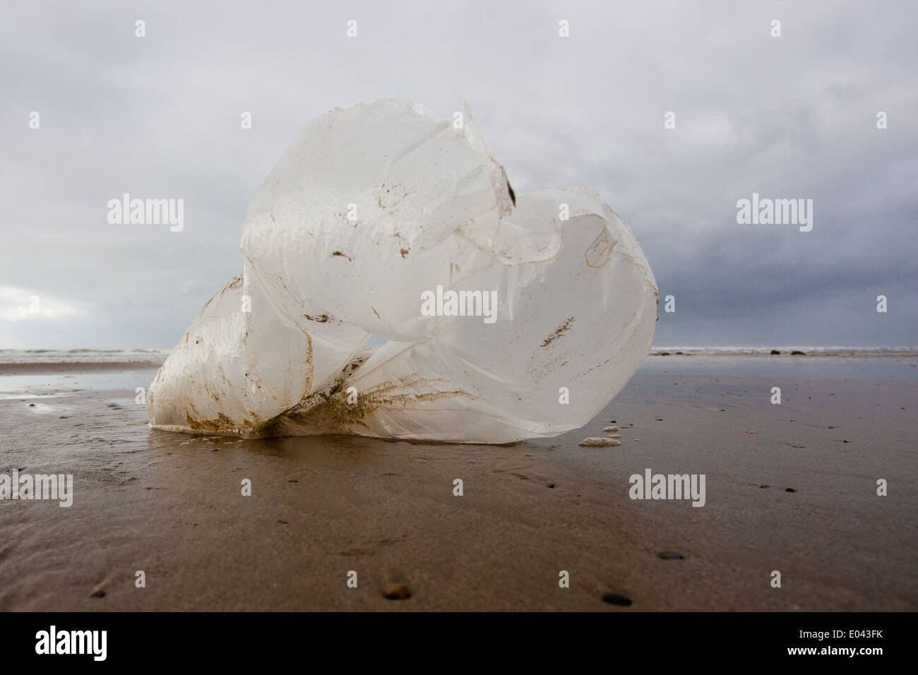 A plastic bag blows in the wind on the beach at Saltburn. These bags take ages to brack down in the sea, whilst remaining a hazard to marine wildlife. - Stock Image