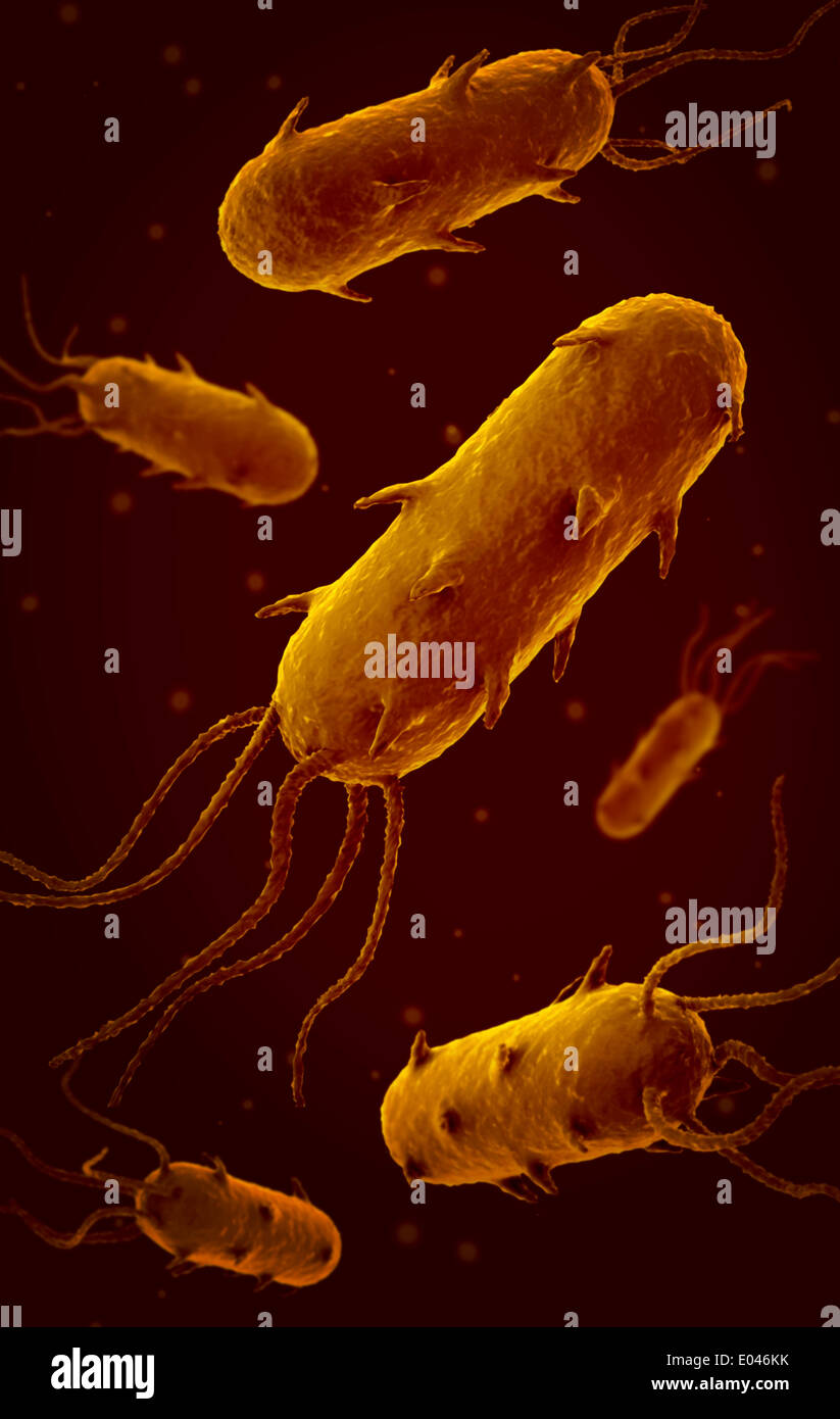 Conceptual image of flagellate bacterium. - Stock Image