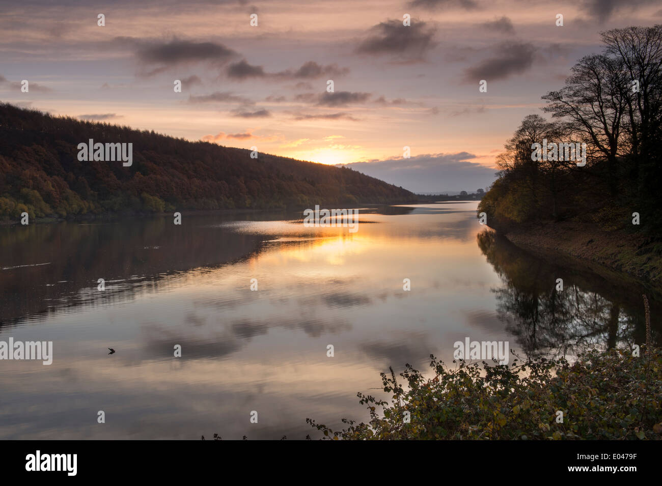 Beautiful scenic morning sunrise over still, calm water & woodland at rural, deserted Lindley Wood Reservoir, Washburn Valley, North Yorkshire, GB. - Stock Image