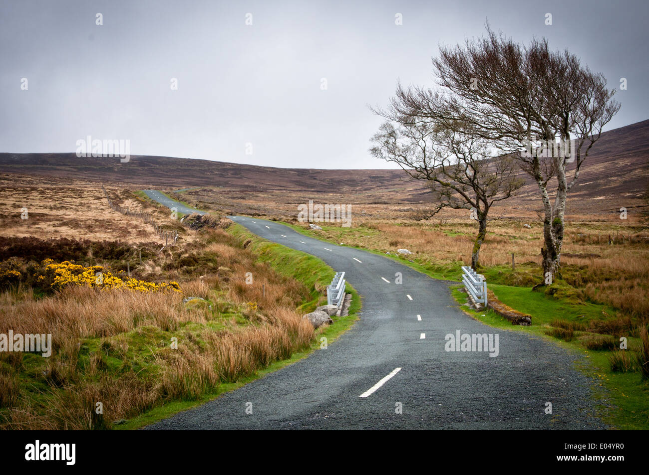 Empty Road through Upland Moor - Stock Image