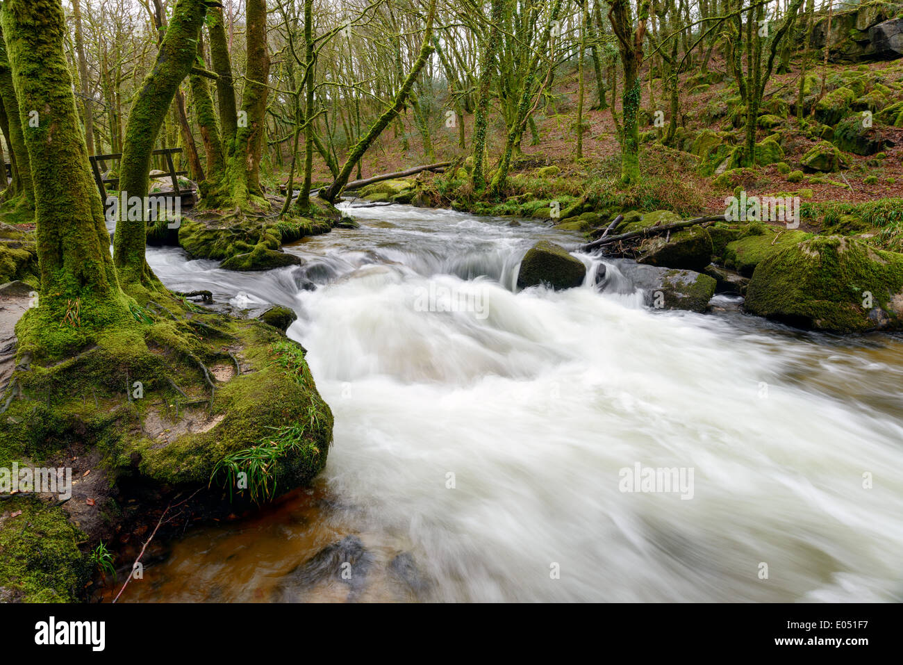 Golitha Falls in Cornwall - Stock Image