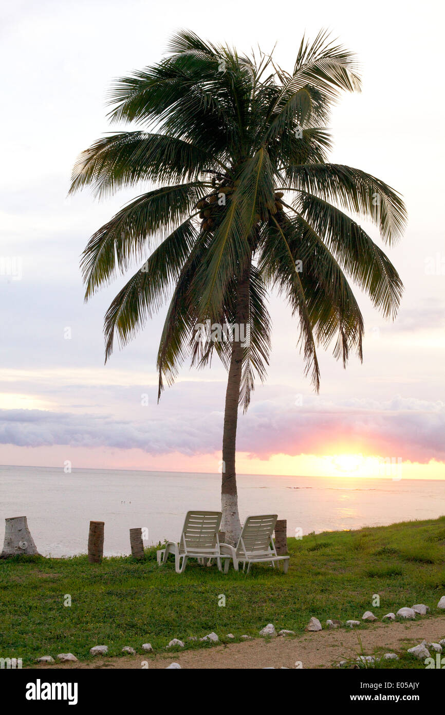 A set of lawn chairs under a palm tree overlook the sunset on the ocean. Stock Photo
