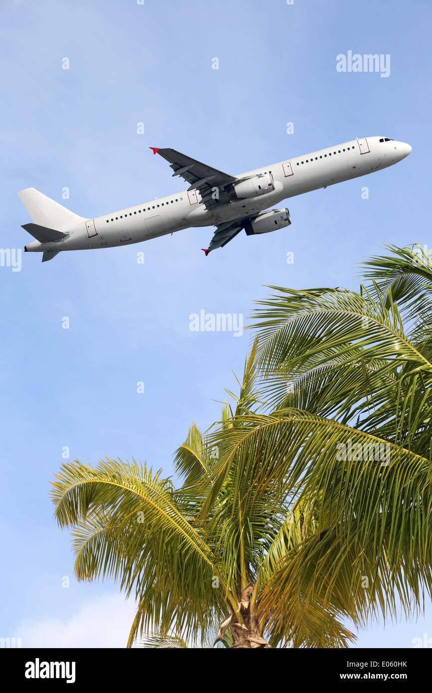 An airplane traveling between palm trees into vacation during a holiday - Stock Image