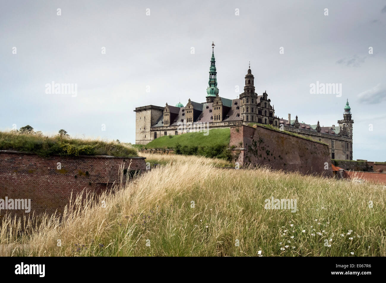 Kronborg Castle with grasses and wildflowers,  Helsingnor, Denmark - Stock Image