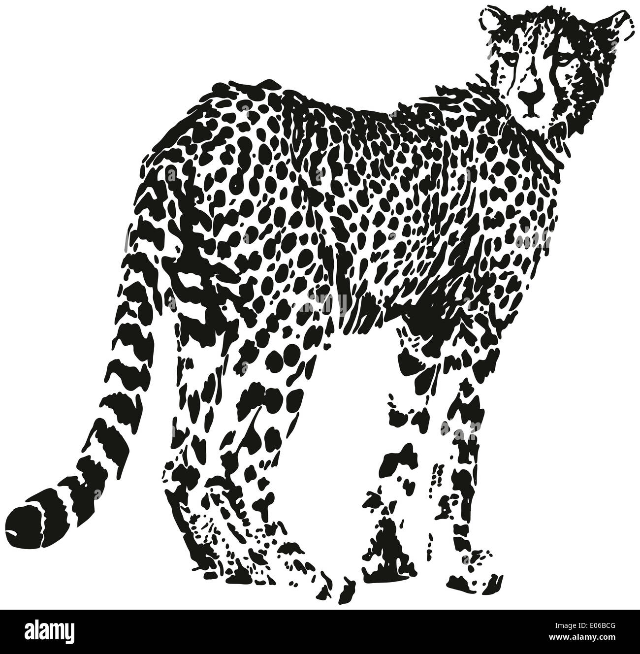 Leopard - big cat shaped from black spots - optical illusion. - Stock Image
