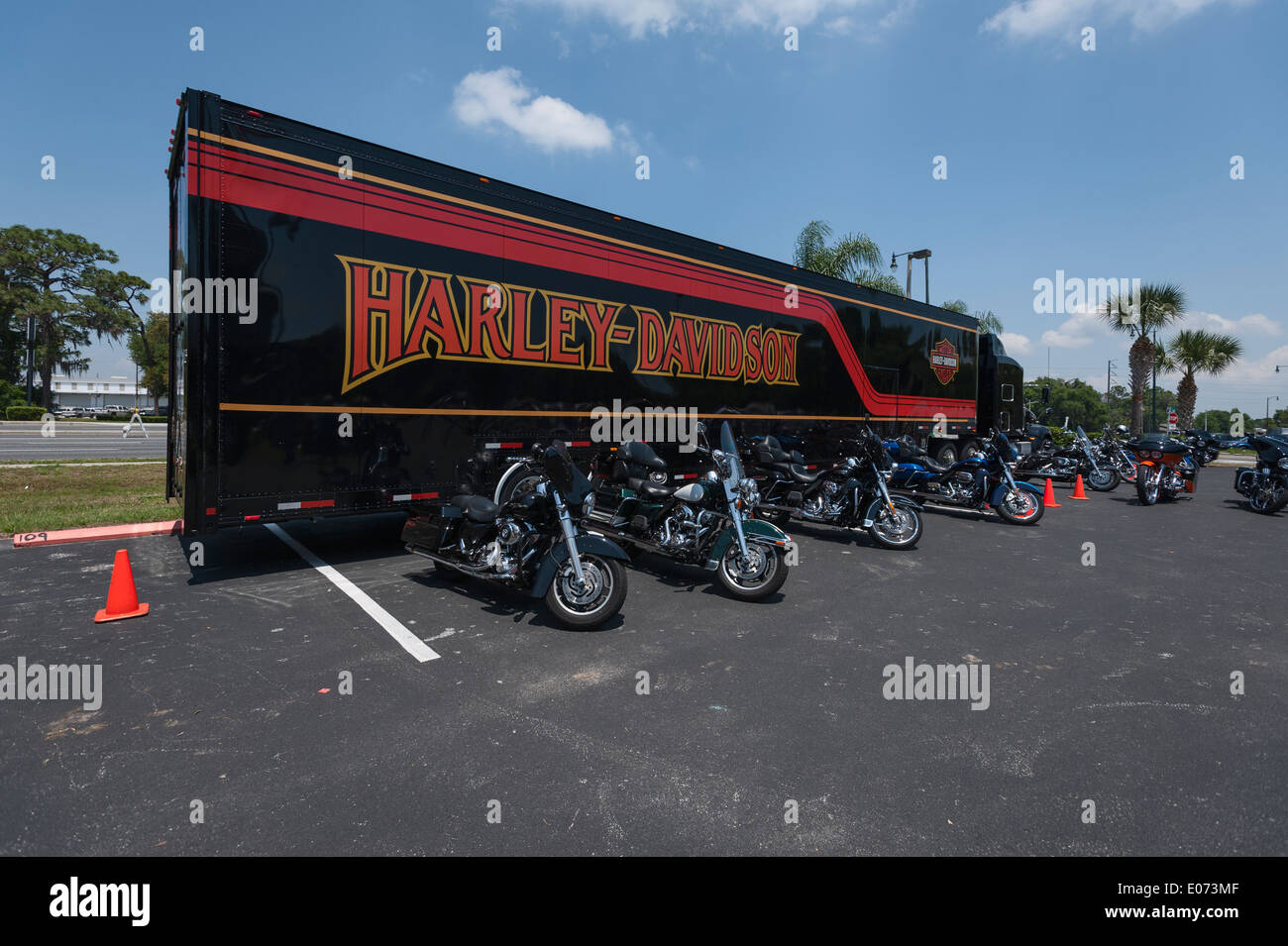 Gator Harley Davidson Dealership Leesburg Stock Photos & Gator ...
