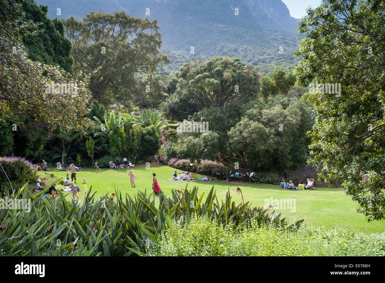 Visitors picnicking in Kirstenbosch botanical garden, Cape Town, South Africa - Stock Image
