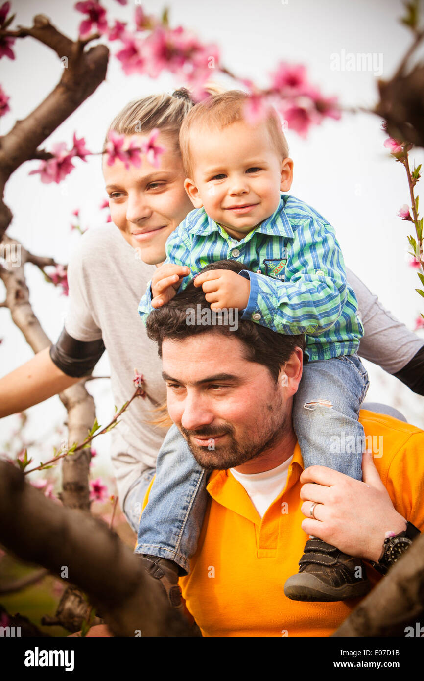 Parents and toddler boy, portrait, Austria - Stock Image