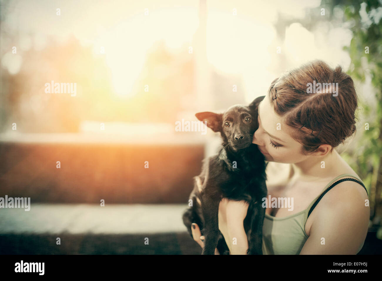 Young woman playing with pet dog at home - Stock Image